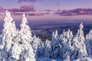 Wernigerode Winter